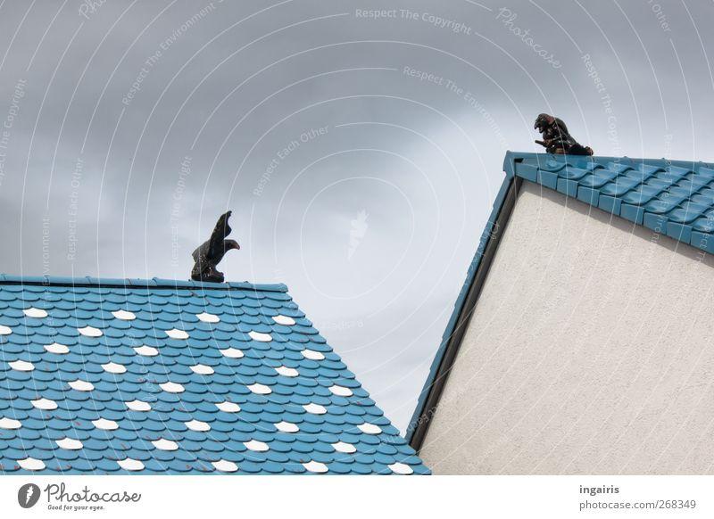 Adler trifft auf Hexe oder andersherum ! blau weiß schwarz Haus Wand Architektur Mauer Gebäude Stil Kunst außergewöhnlich Design verrückt Häusliches Leben Dach