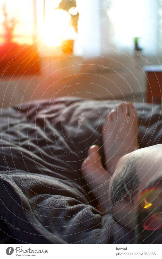 Sonnenzeit Mensch ruhig Erwachsene Erholung feminin Leben Beine Fuß liegen Zufriedenheit Wohnung Freizeit & Hobby Häusliches Leben Warmherzigkeit Bett Tattoo