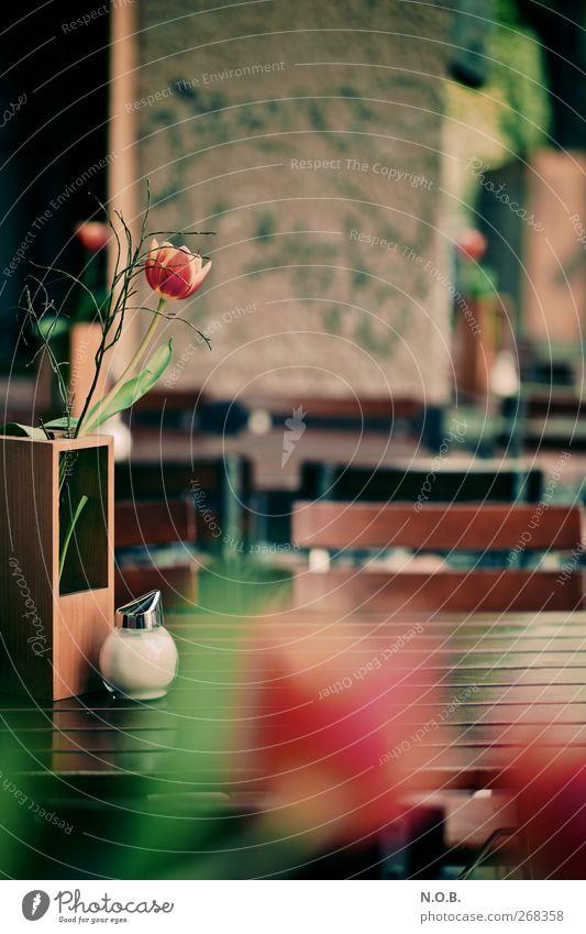 jemütlé draußn sitzn Lifestyle Freizeit & Hobby ausgehen Kommunizieren einzigartig Stadt grün rot Gefühle Erholung Gesellschaft (Soziologie) Kontakt Farbfoto