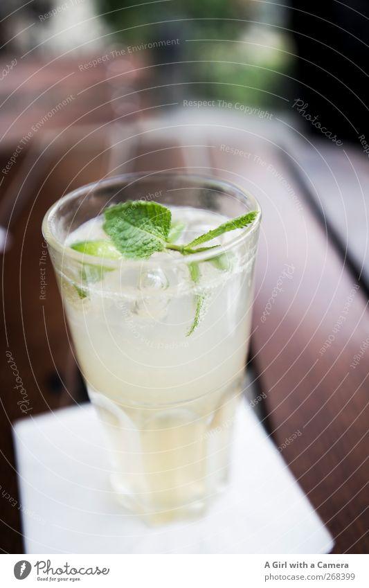 lecker Ingwer Limonade Lebensmittel Minze Ernährung Büffet Brunch Bioprodukte Vegetarische Ernährung Getränk Erfrischungsgetränk Coolness kalt voll unberührt