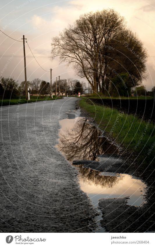 Peripherie Natur Baum ruhig Landschaft Straße dunkel Herbst Frühling Wege & Pfade Regen Wetter Feld Asphalt Unwetter Verkehrswege Strommast