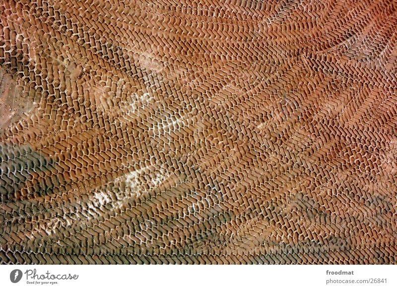 Spurensuche Reifenspuren Relief Kies Vogelperspektive Lastwagen Strukturen & Formen Hintergrundbild Verlauf braun Landwirtschaft Bagger Verkehr Furche