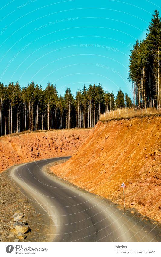 Straßenschlucht Erde Himmel Wolkenloser Himmel Frühling Sommer Herbst Schönes Wetter Wald Felsen Schlucht Verkehrszeichen Verkehrsschild leuchten gigantisch
