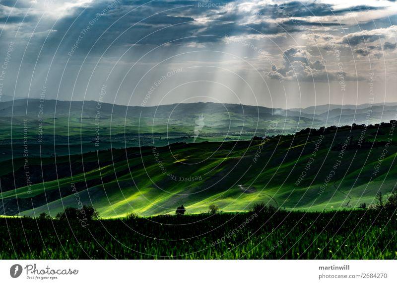 Regen in der Toskana Ferien & Urlaub & Reisen Natur Landschaft Wassertropfen Wolken Sonnenlicht Frühling Baum Wiese Feld Hügel Einsamkeit Wege & Pfade