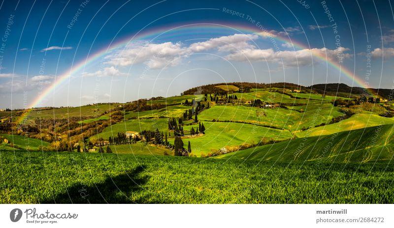 Regenbogen über der Toskana Ferien & Urlaub & Reisen Ausflug Natur Landschaft Wolken Schönes Wetter Pinie Wiese Hügel Italien schön Farbfoto Außenaufnahme