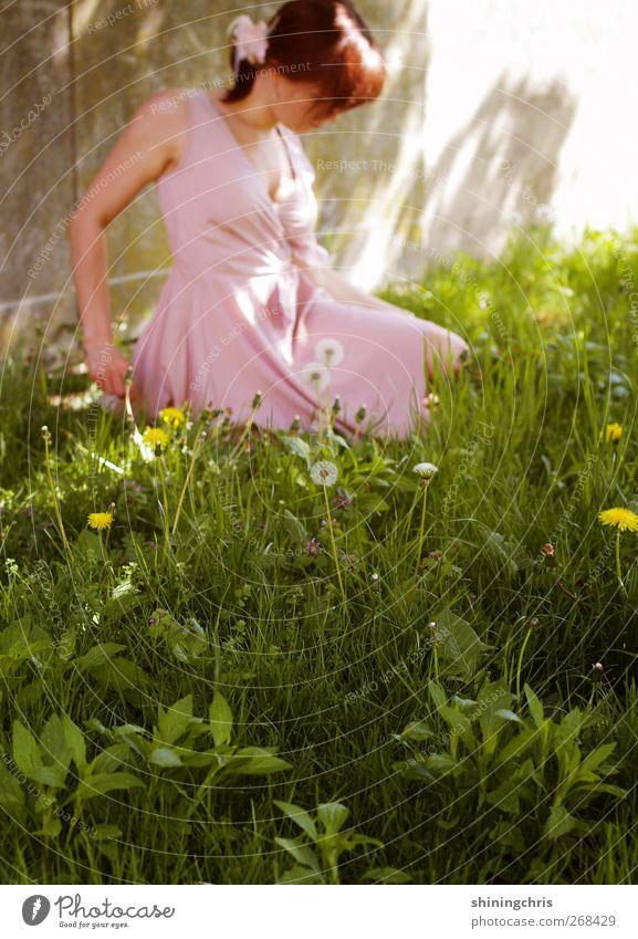 cinderella in a partydress Mensch Natur Jugendliche grün schön ruhig Erwachsene Wiese feminin Frühling Gras Garten Mode rosa sitzen Junge Frau