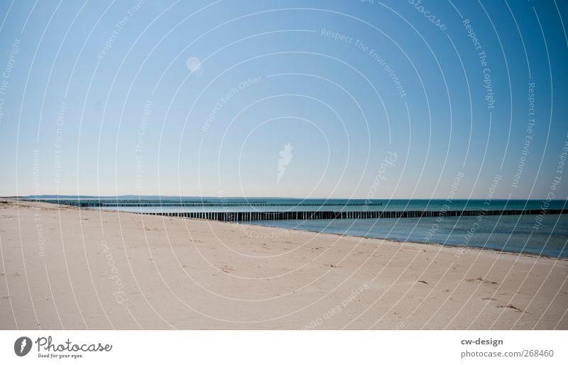 So weit die Füße tragen harmonisch Erholung ruhig Meditation Umwelt Natur Landschaft Sand Wasser Himmel Wolkenloser Himmel Sonnenlicht Frühling Sommer