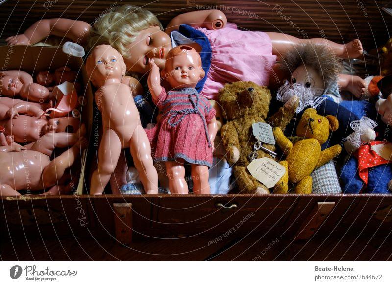 Kindheitsrelikte Kindererziehung Kleid Spielzeug Puppe Teddybär Stofftiere entdecken Erholung Spielen Wachstum Fröhlichkeit natürlich mehrfarbig Gefühle Freude