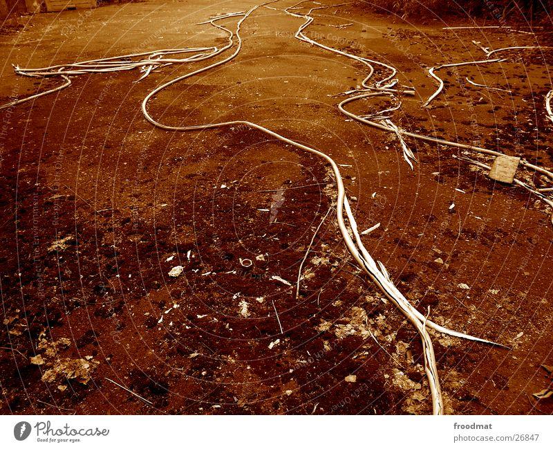 Erdwürmer Schraube Gefäße Schwung obskur Erde Bodenbelag dreckig Kabel ruhig Strukturen & Formen