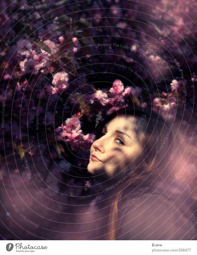 Mon Cherry Mensch feminin Junge Frau Jugendliche Erwachsene Kopf Haare & Frisuren Gesicht 1 18-30 Jahre Pflanze Frühling Schönes Wetter Baum Blatt Blüte Kirsche
