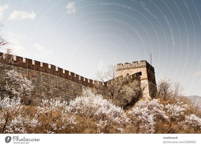 aus dem All sichtbar? Himmel blau alt Baum Wolken Landschaft Wand Frühling Mauer braun groß Sträucher Kultur Schönes Wetter Asien China