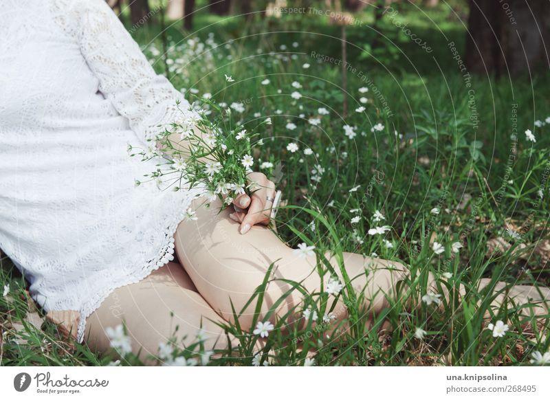 frühling Mensch Frau Natur Jugendliche Hand weiß grün schön Blume Erwachsene Wiese feminin Frühling Gras Beine Mode