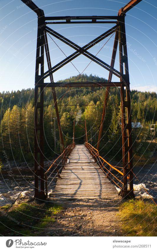 Alte Brücke in der Wildniss blau alt Sommer schwarz Straße Herbst Wärme Wege & Pfade grau braun gold Abenteuer kaputt Wandel & Veränderung Vergänglichkeit