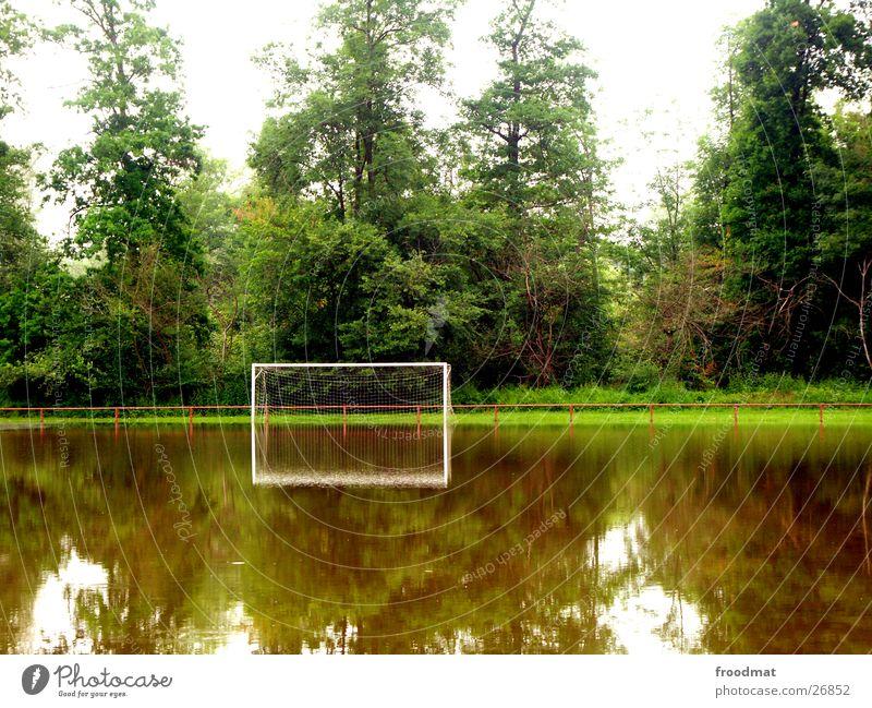 das Spiel fällt wohl überflutet aus Reflexion & Spiegelung Baum ruhig Hochwasser Sport Fußball Tor Überschwemmung Wasser Geländer Windstille Glätte Reflektion