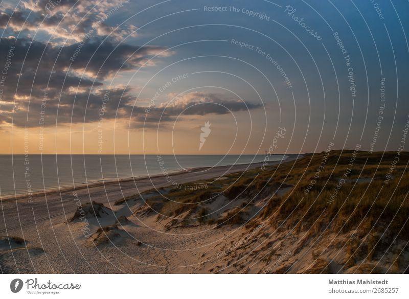 Blick auf den Strand in Dänemark Ferien & Urlaub & Reisen Freiheit Sommerurlaub Umwelt Natur Landschaft Wasser Himmel Sonnenaufgang Sonnenuntergang