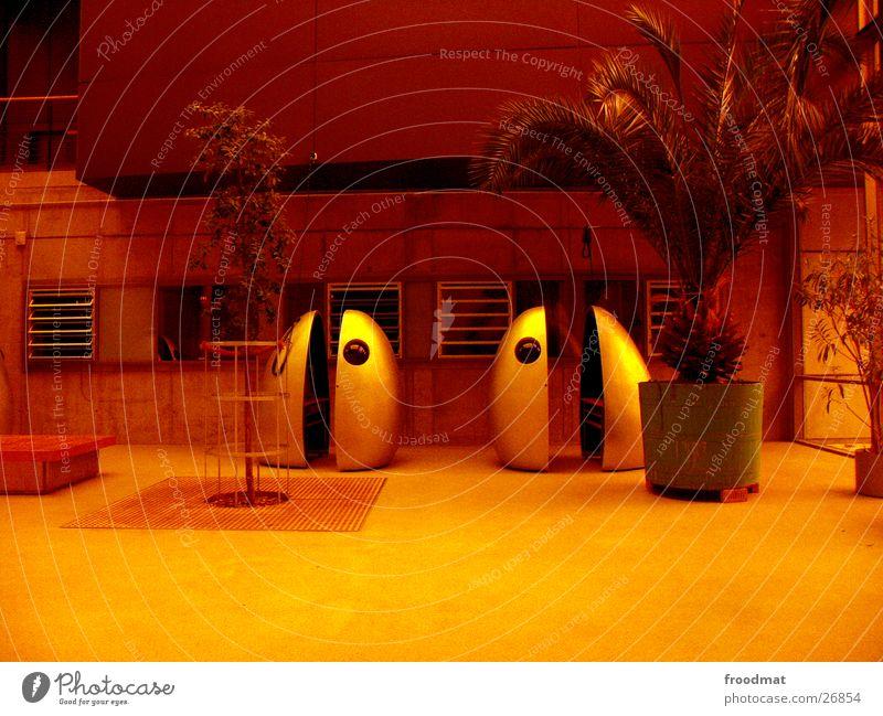 Filmkapseln in orange und mit Palme orange obskur Ei Palme Futurismus Potsdam