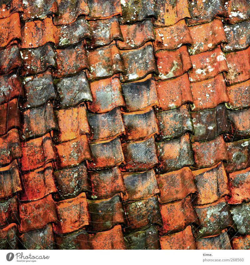 Stabile Seitenlage alt Haus Ordnung ästhetisch Dach Handwerk eckig verrotten Dachziegel Dachdecker