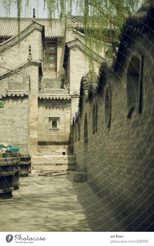 Hinterhof Frühling Baum Blatt Park pingyao China Kleinstadt Stadt Stadtzentrum Altstadt Skyline Menschenleer Haus Palast Burg oder Schloss Bauwerk Gebäude