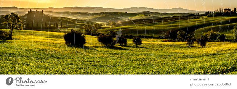 Panorama im Val D'Orcia Toskana im Sonnenaufgang Ferien & Urlaub & Reisen Tourismus Villa Landschaft Sonnenuntergang Frühling Schönes Wetter Wiese Feld Hügel