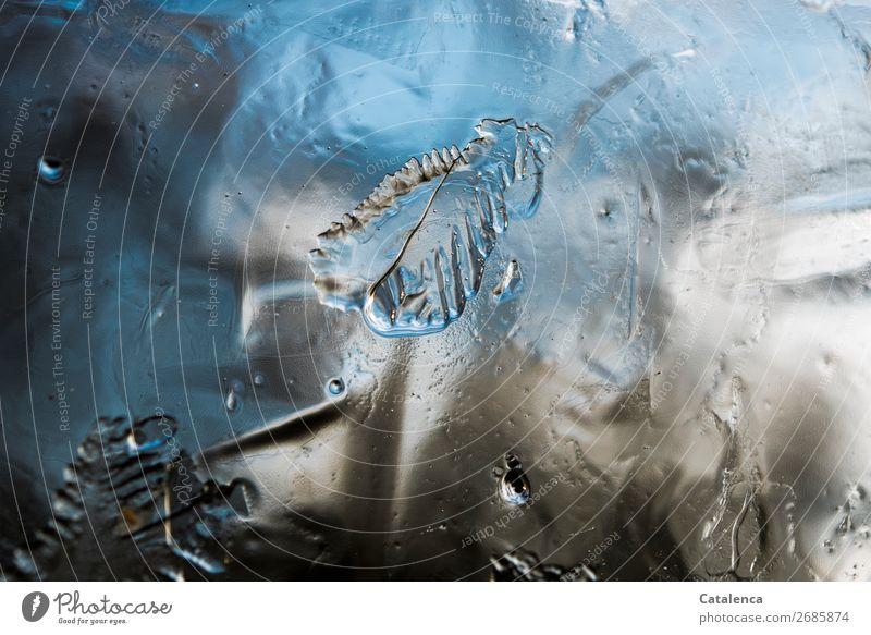 Im gefrorenem Zustand Natur blau Winter kalt natürlich braun grau Stimmung Design Eis authentisch Frost türkis Eiskristall Formation