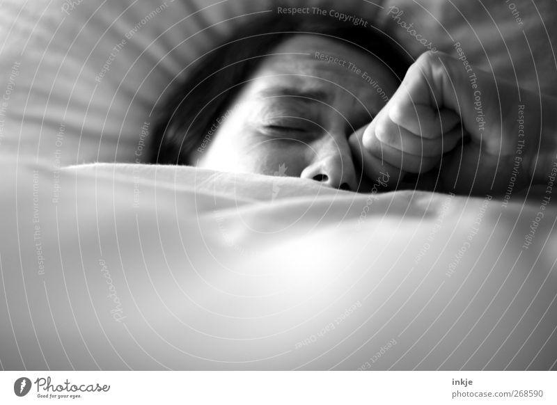 Frühjahrsmüdigkeit Krankheit Erholung ruhig Häusliches Leben Bett Erwachsene Gesicht 1 Mensch 30-45 Jahre Federbett Bettwäsche Bettdecke schlafen träumen