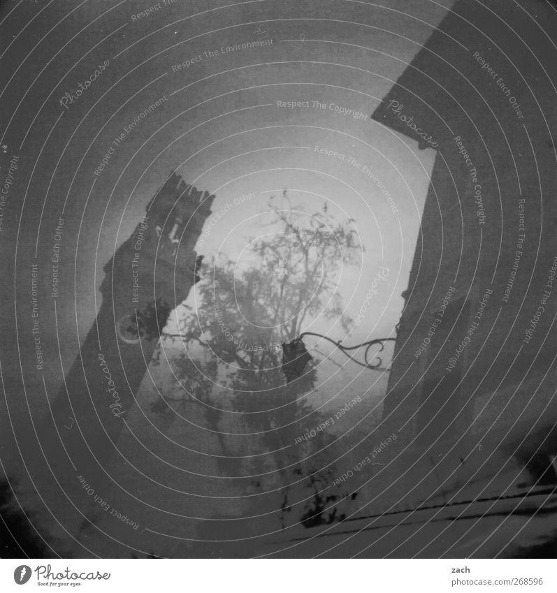 Venedig, doppelt alt Stadt Pflanze Baum Haus schwarz dunkel Kirche Vergänglichkeit Turm Italien Bauwerk Laterne analog Doppelbelichtung Sehenswürdigkeit
