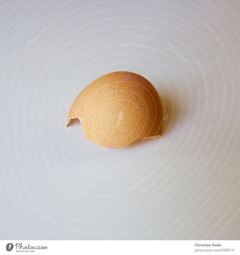 Calimero is gone Lebensmittel Ernährung Frühstück weiß Quadrat Eis Hülle Eierschale braun aufgebrochen Riss Punkt Haushuhn Gedeckte Farben Innenaufnahme