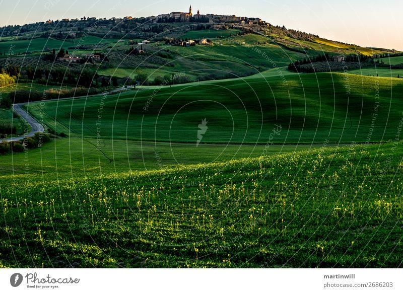 Pienza im Morgenlicht Ferien & Urlaub & Reisen Landschaft Frühling Gras Hügel Toskana Val d'Orcia Dorf Menschenleer Straße ruhig Wege & Pfade Schatten
