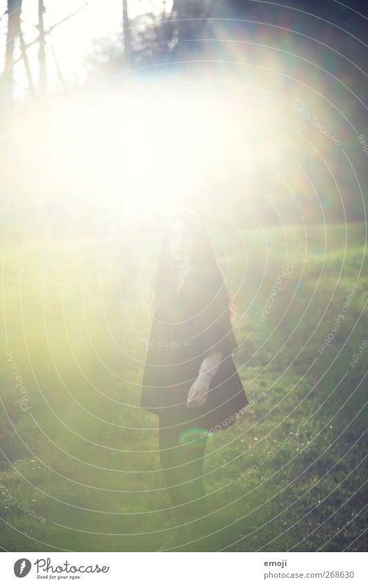 wonderland Jugendliche 1 Mensch 18-30 Jahre Erwachsene Umwelt Natur grün träumen Traumwelt Traumland Farbfoto Außenaufnahme Tag Licht Silhouette