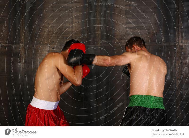Zwei Boxer Männer boxen in Handschuhen Sport Kampfsport Sportler Erfolg Verlierer Sportveranstaltung maskulin Mann Erwachsene 2 Mensch muskulös stark rot
