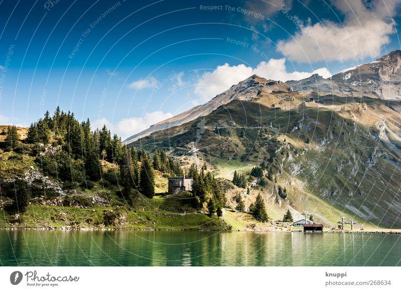 2000 m.ü.M Umwelt Natur Landschaft Urelemente Himmel Wolken Sonne Sonnenlicht Sommer Wetter Schönes Wetter Baum Wald Felsen Alpen Berge u. Gebirge Gipfel