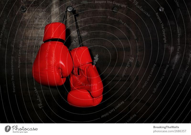 Rote Boxhandschuhe aus Leder, die an der schwarzen Wand hängen. Sport Fitness Sport-Training Kampfsport dunkel rot Aggression Konkurrenz Boxsport erhängen