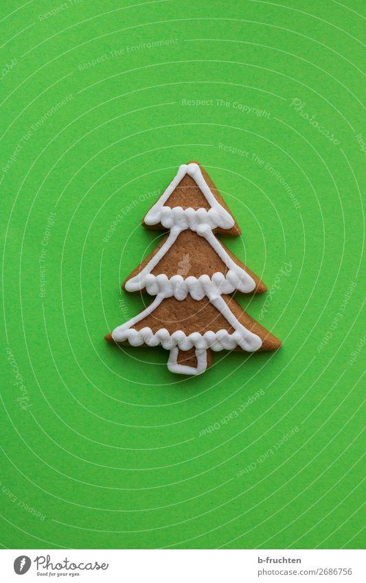 Oh Tannenbaum Weihnachten & Advent grün Baum Feste & Feiern Fröhlichkeit verrückt Papier lecker Backwaren Süßwaren wählen Weihnachtsbaum Diät Mitte backen