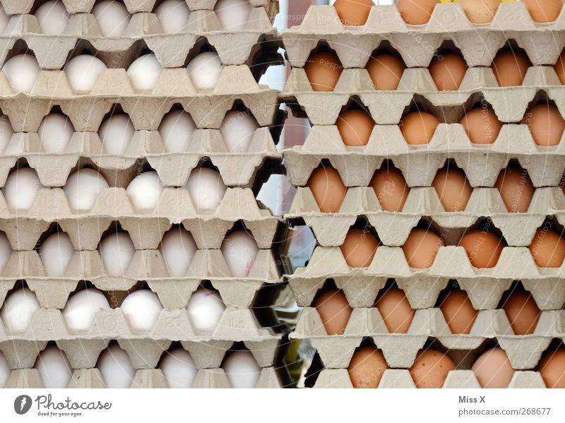 Ei Ei Ei Ei Ei Ei Ei Ei Ei Ei Ei Ei Ei Ei Ei weiß Ernährung Lebensmittel braun frisch rund viele Bauernhof lecker Bioprodukte verkaufen Hühnerei Freilandhaltung Wochenmarkt Eierkarton Eierproduktion