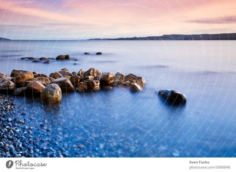 Felssteine am Ufer des Bodensees schön Erholung ruhig Ferien & Urlaub & Reisen Tourismus Sommer Sonne Strand Meer Landwirtschaft Forstwirtschaft Natur
