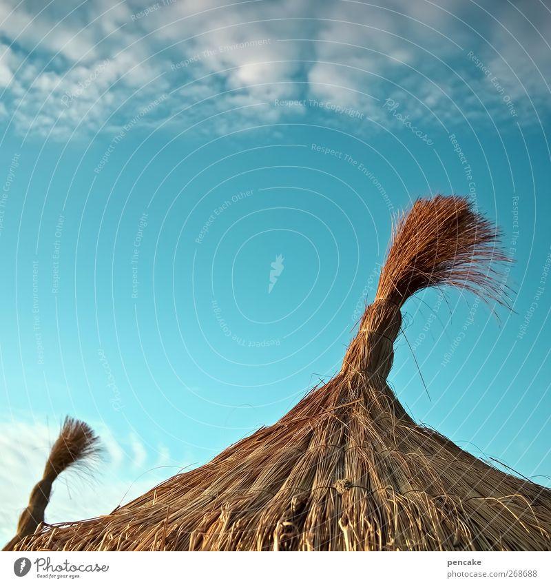 die insel Himmel Sommer Strand Wahrzeichen träumen Wunsch Zufriedenheit Mallorca Sonnenschirm Luftverkehr Geldmaschine Farbfoto Außenaufnahme Textfreiraum oben