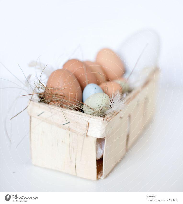 Eier im Korb weiß Ernährung Lebensmittel braun Ostern Feder Landwirtschaft Bauernhof Kasten Restaurant Frühstück Haushuhn Stroh Nutztier Hahn