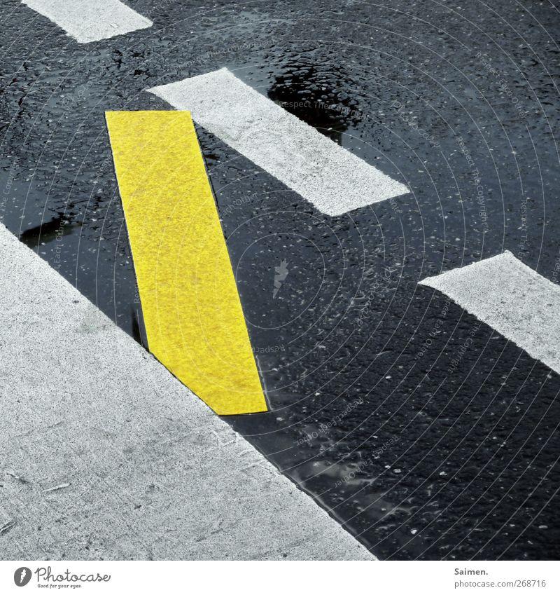 brückenschlag Verkehr Straße Verkehrszeichen Verkehrsschild Toleranz Fahrbahnmarkierung gelb Streifen Strukturen & Formen Asphalt Reflexion & Spiegelung nass
