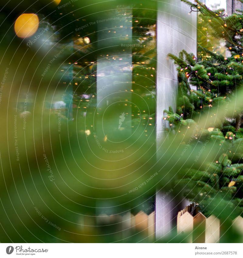 Junk | Rest vom Fest Weihnachten & Advent Weihnachtsbaum Kaufhaus Des Westens Fassade Dekoration & Verzierung Kerze leuchten gelb grau grün