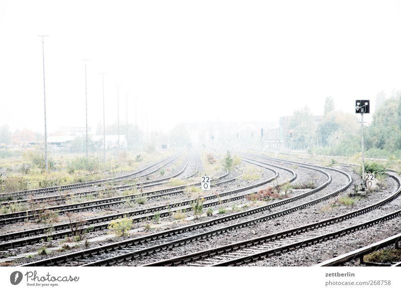 Hell Natur Umwelt Landschaft Freiheit hell Wetter Klima Nebel Verkehr leer Gleise Verkehrswege Kurve Dunst Klimawandel Verkehrsmittel