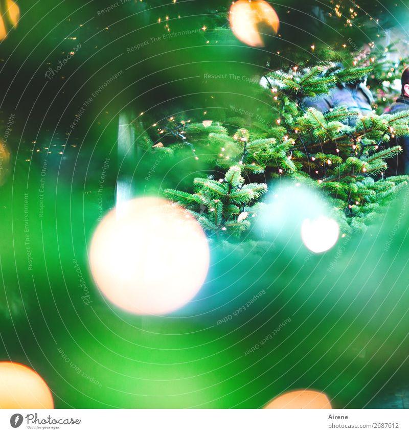 Lichterbaum II Weihnachten & Advent Weihnachtsbaum Baum Dekoration & Verzierung Kerze Lichterkette leuchten gelb türkis weiß Gefühle Freude Hoffnung Glaube