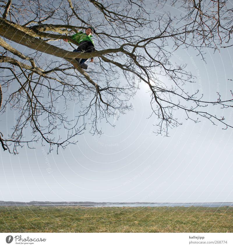 luftschloss Lifestyle Freizeit & Hobby Spielen Kinderspiel Mensch Junge Kindheit Leben 1 3-8 Jahre Umwelt Natur Landschaft Pflanze Tier Urelemente Erde Luft