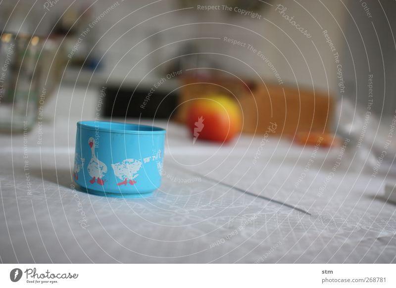 bei oma [01] alt Ernährung Lebensmittel Wohnung Frucht Fröhlichkeit Häusliches Leben Dekoration & Verzierung Getränk Lifestyle Tiergruppe Küche Apfel Kunststoff Geschirr Tasse