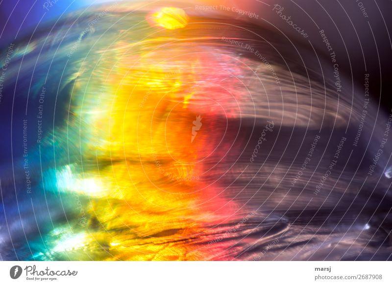 Voll im Farbenrausch Freude außergewöhnlich leuchten träumen Fröhlichkeit Lebensfreude verrückt geheimnisvoll skurril verträumt Erscheinung knallig