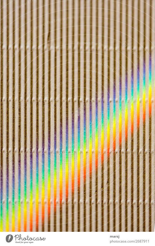 HAPPY BIRTHDAY PHOTOCASE ZUM 19. GEBURTSTAG | Viel Platz für bunte Kreativität und auch geradliniges Wellkarton Regenbogen regenbogenfarben schräg Spektralfarbe