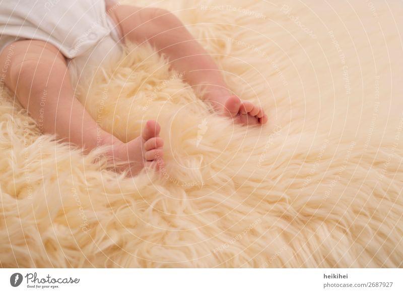 Little Baby Glück schön Wohlgefühl Zufriedenheit Erholung ruhig Wohnung Mensch Körper Haut Beine Fuß 1 0-12 Monate liegen schlafen fantastisch Gesundheit