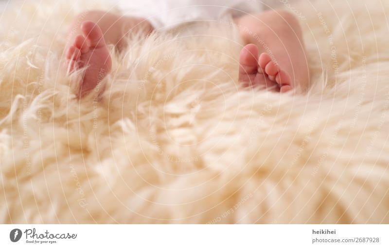 Babyfüßchen feminin Fuß 1 Mensch 0-12 Monate liegen Zehen klein neugeboren Fell zart hell Einladung danke schön Liebe Vertrauen dankbar Wunder wunderbar