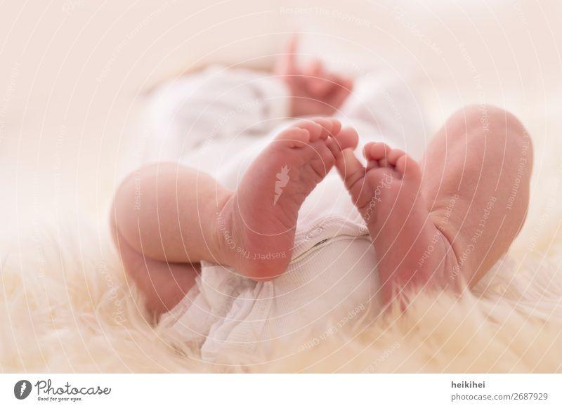 die zweite Lebenswoche Glück Körper Mensch feminin Baby Hand Gesäß Beine Fuß 1 0-12 Monate Liebe liegen fantastisch nah natürlich neu niedlich schön weiß