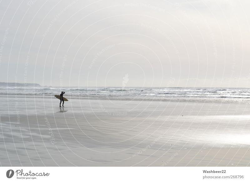 Surfers Paradies sportlich Freizeit & Hobby Ferien & Urlaub & Reisen Tourismus Abenteuer Ferne Freiheit Sommer Sommerurlaub Strand Meer Wellen Surfen Sport