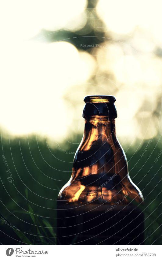 Wochenende II Ferien & Urlaub & Reisen Sommer Erholung Freude Freiheit Stimmung glänzend Zufriedenheit Glas Getränk Lebensfreude Schönes Wetter Jugendkultur Abenteuer trinken Wohlgefühl